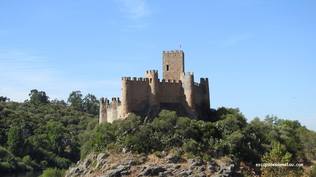https://escapadesdemalou.com/2018/05/le-chateau-dalmourol/